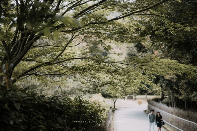 Japan Pre Wedding by Framelicious Studio - 005