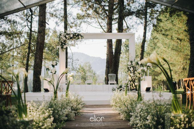 The Wedding Of Ferdi & Tania by Elior Design - 005