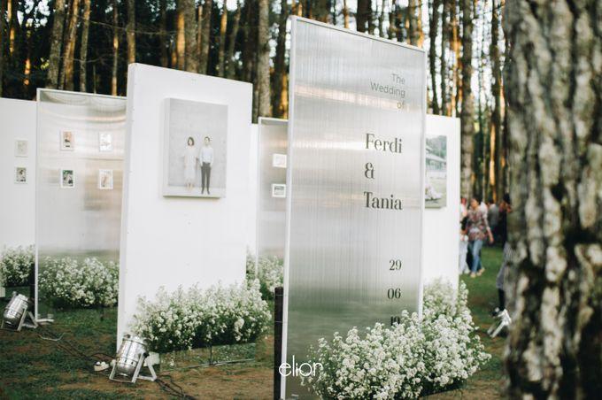 The Wedding Of Ferdi & Tania by Elior Design - 014