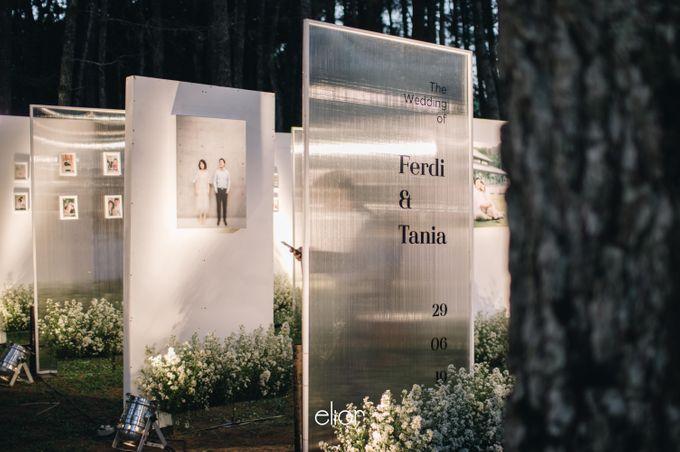 The Wedding Of Ferdi & Tania by Elior Design - 020