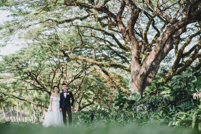 Garden Wedding Rasa Sayang Shangrila Penang by My Love Momentz - 029