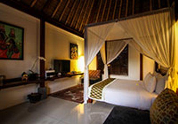 Garden Villa by Ubud Green Resort Villa - 005