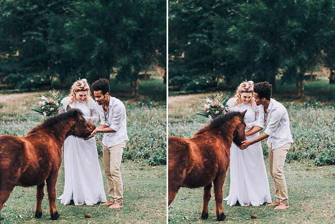 Sarah & Alfred | Terri's Rustic Farm Wedding by Andrew Sun Photography - 032