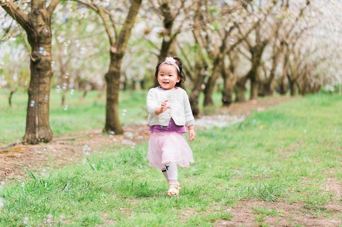 Cherry blossom Family by Lena Lim Photography - 004