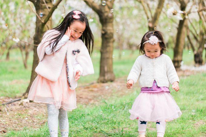 Cherry blossom Family by Lena Lim Photography - 005