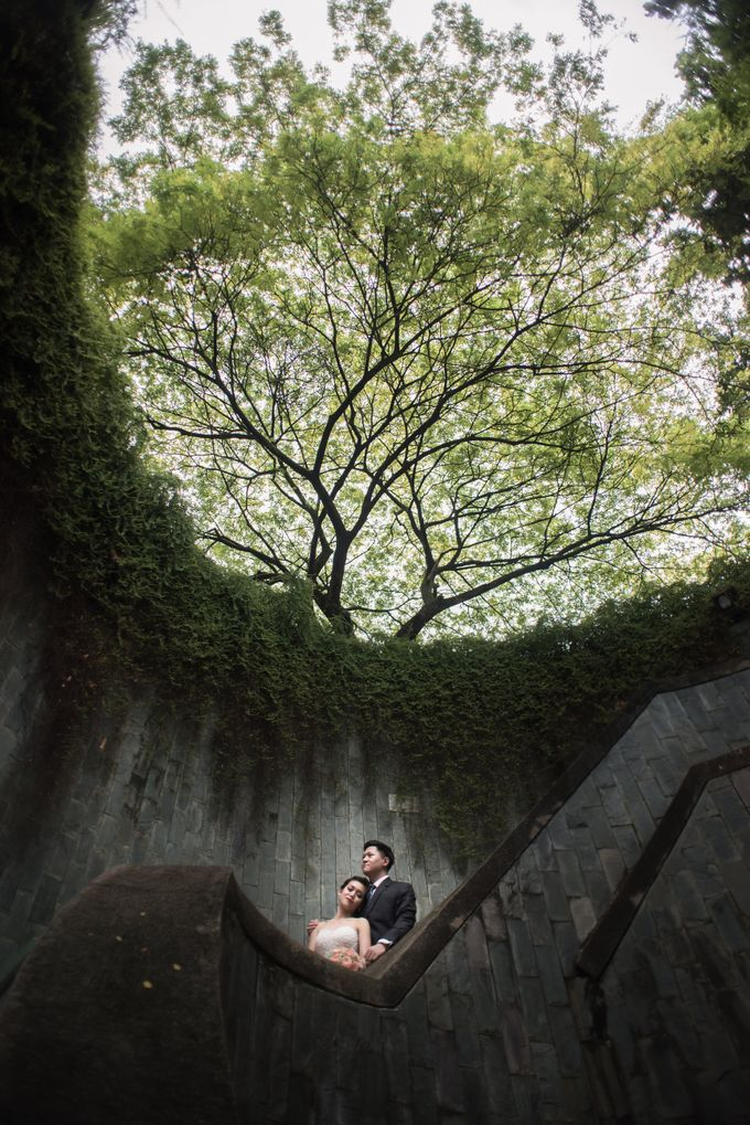 Pre-wedding - Herman & Jia Jia by A Merry Moment - 002