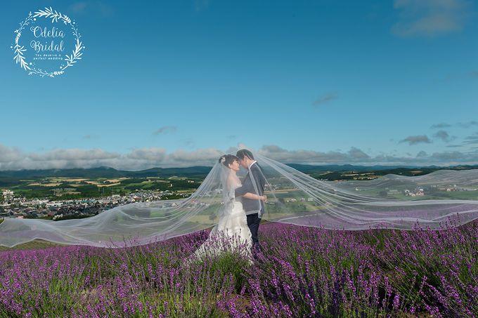 Hokkaido pre wedding photography by Odelia Bridal - 001