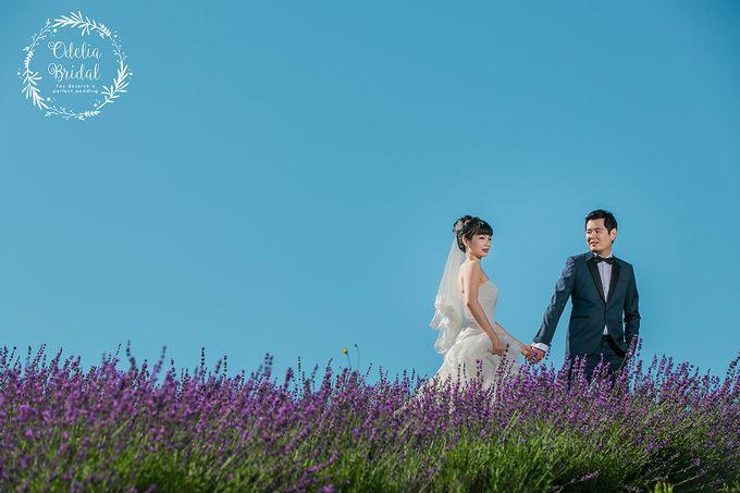 Hokkaido pre wedding photography by Odelia Bridal - 002