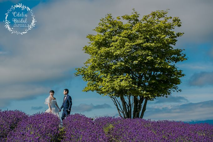 Hokkaido pre wedding photography by Odelia Bridal - 003