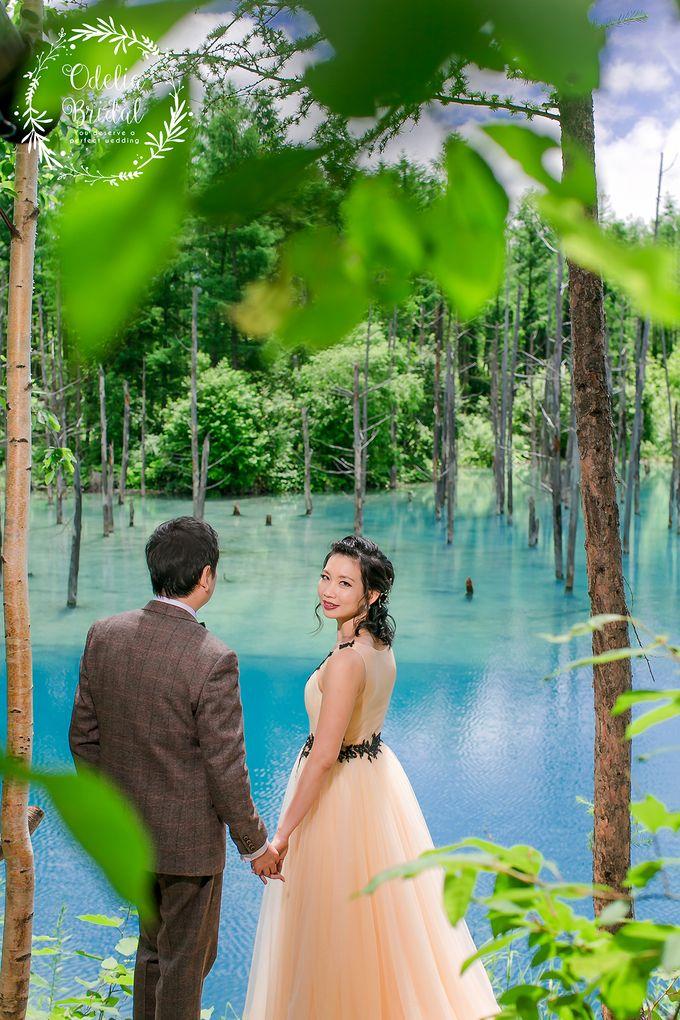 Hokkaido pre wedding photography by Odelia Bridal - 009