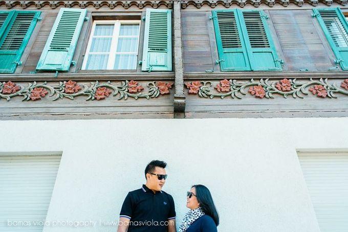 Honeymoon in Switzerland by Barnas Viola Photography - 009