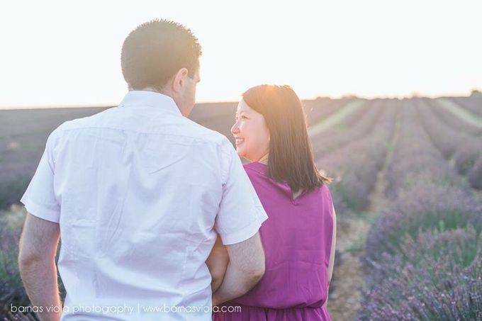 Surprise Proposal in Lavender Field by Barnas Viola Photography - 003