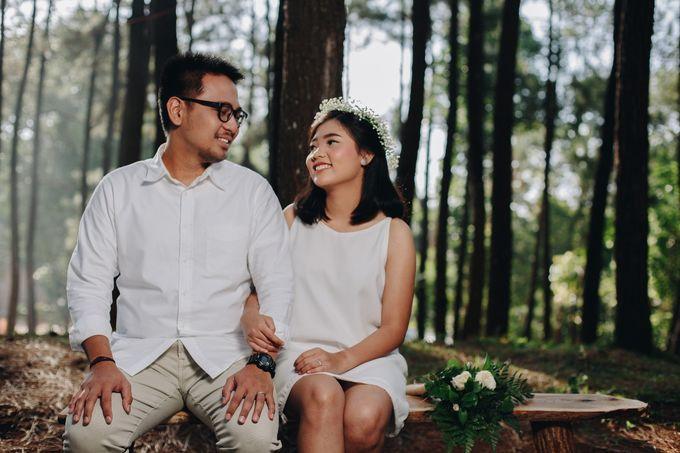 Pre-Wedding by Asanka Project - 013