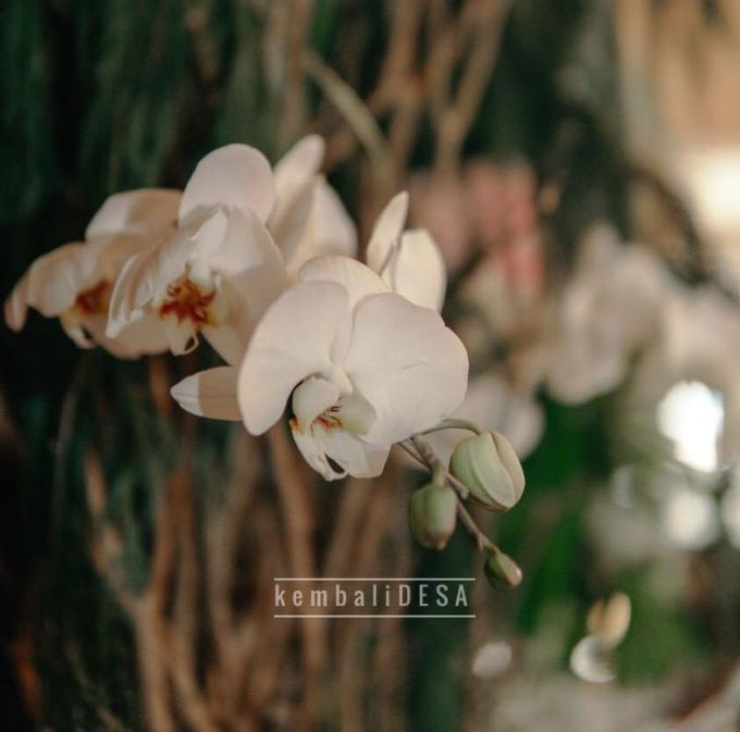 Rustic Decoration by kembaliDESA - 003