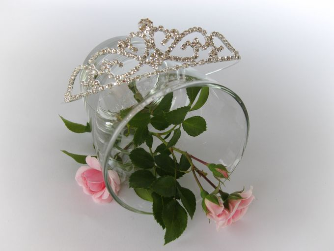 Bridal Tiara by Pamela Falli - 001