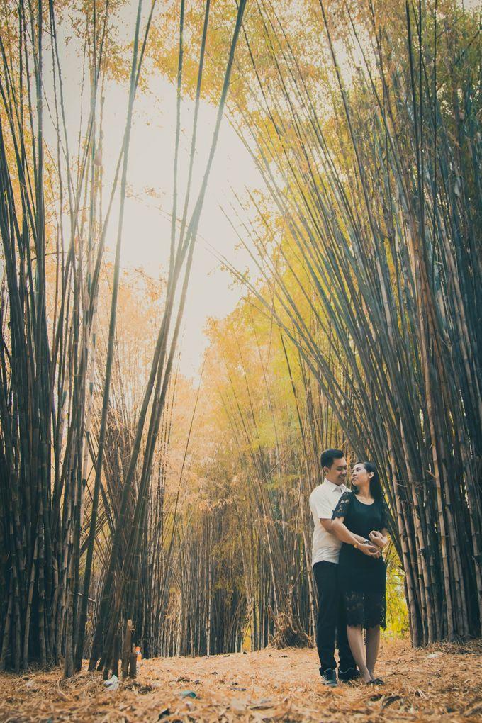 Prewedding Story of Wisnu and Devi by Khoironi Syifa - 004