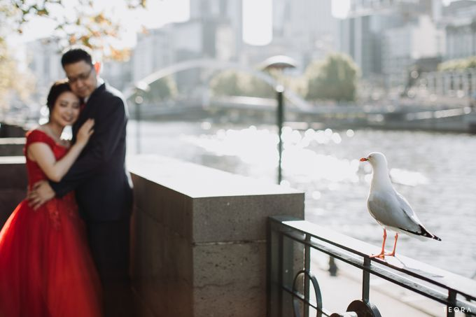 Henry & Milla Melbourne Prewedding by attelia bridal - 011