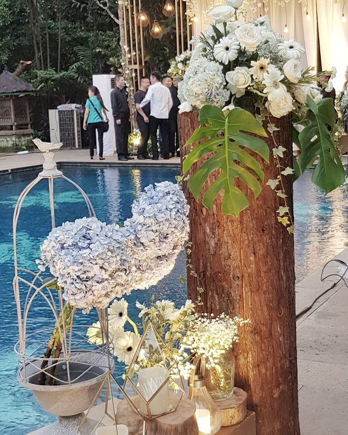 The Wedding Of Rodney And Irene by Dream Decor - 001