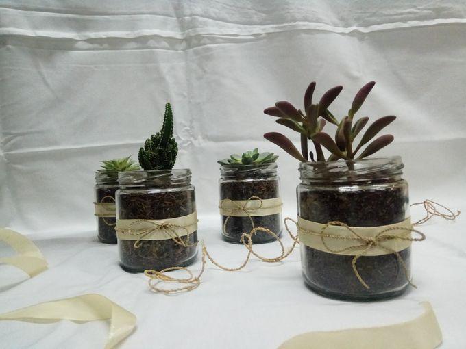 Succulent In a Jar 01 by Rhea - 002