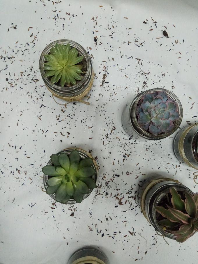 Succulent In a Jar 01 by Rhea - 005