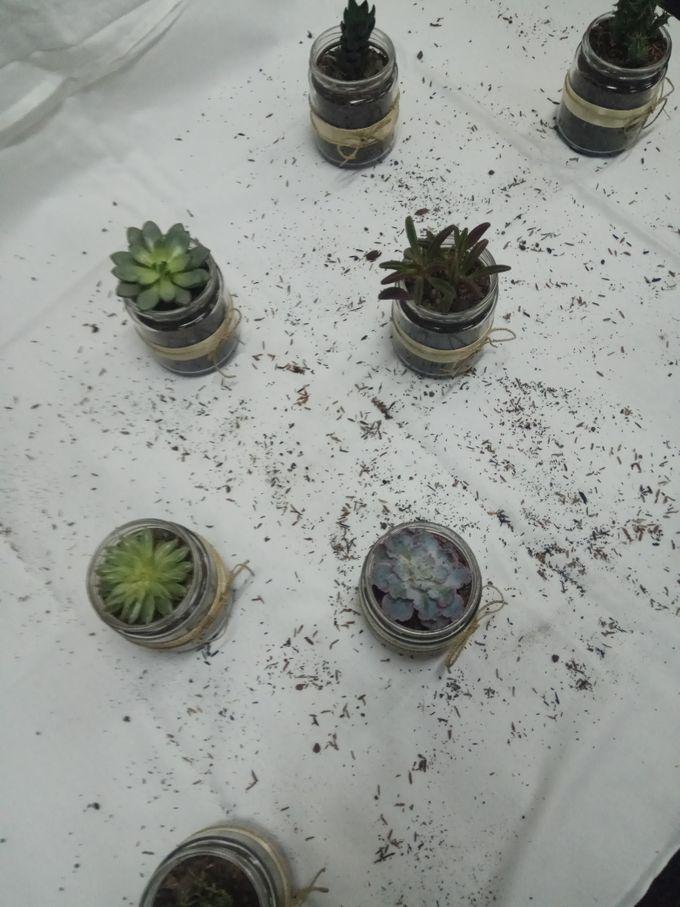 Succulent In a Jar 01 by Rhea - 007