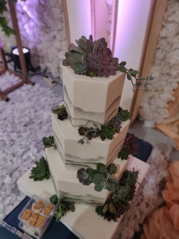 Succulent Beauty by Cakes 'n' Bakes - 004