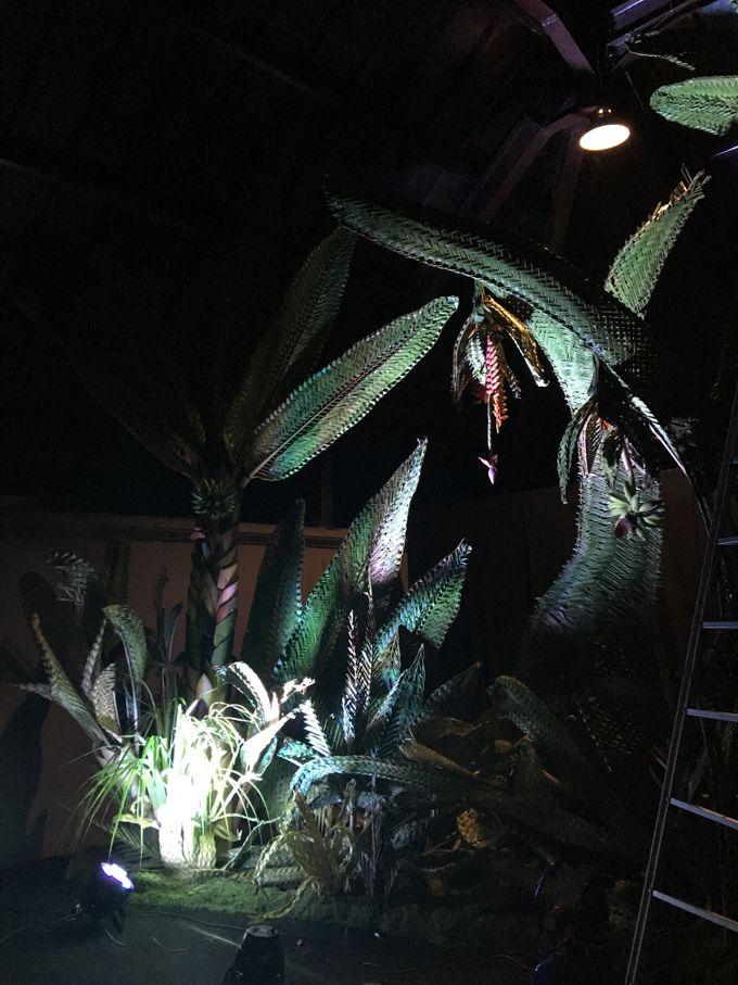 Dramatic Backdrops by Make A Scene! Bali - 005