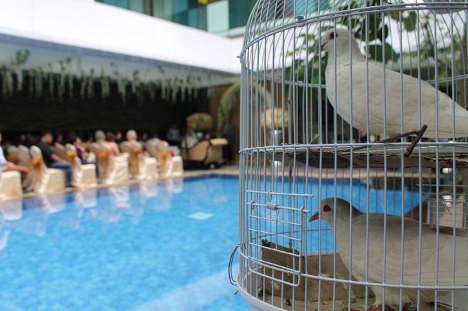 Holy Matrimony at Swimming Pool by GRAND MERCURE Jakarta Harmoni - 001