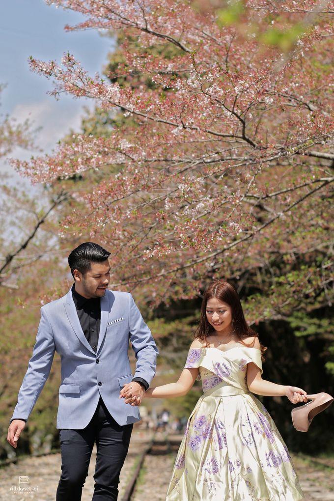 Lovely Cherry Blossom by ridzkysetiaji photo - 039