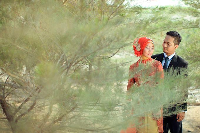 Romance Between Desert and Pine by ridzkysetiaji photo - 014