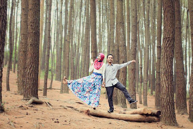 Romance Between Desert and Pine by ridzkysetiaji photo - 016