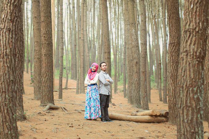 Romance Between Desert and Pine by ridzkysetiaji photo - 017