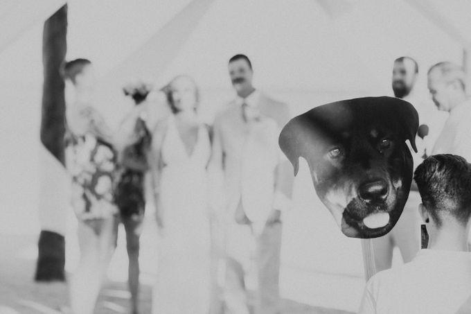 Weddingday Mr & Mrs Battie by Topoto - 028