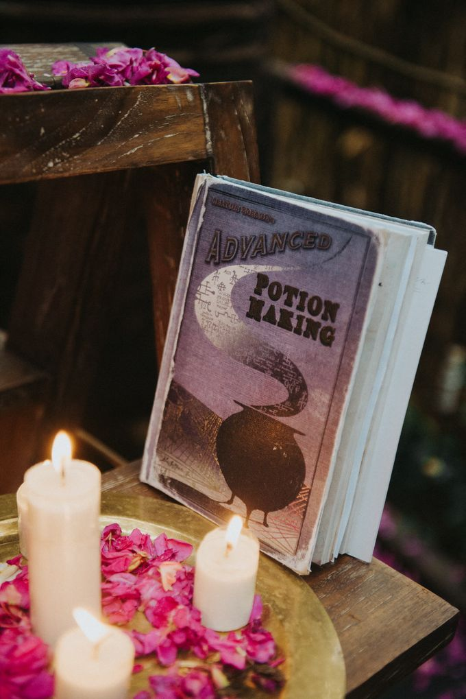 Twilight and Harry Potter Themed Wedding by Terralogical - 038