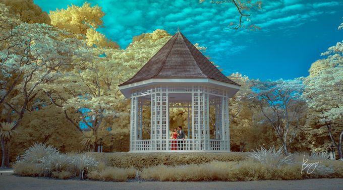 Infrared Photography by Bogs Ignacio Signature Gallery - 025
