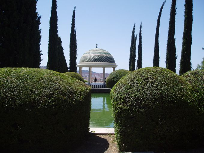 Wedding in Jardin Botanico by Eventonova - 008