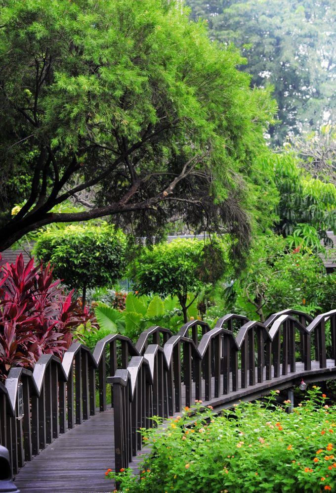 Singosari Room - Pool Side by Hotel Borobudur Jakarta - 028
