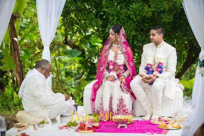 Wedding Photography images by Denise Mason Photography - 010