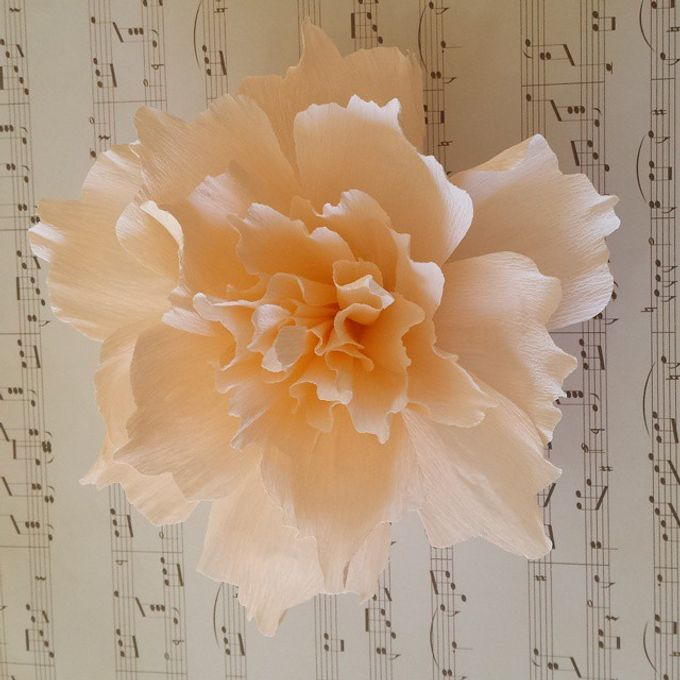 Giant Paper Flowers by Playing With Paper - 004