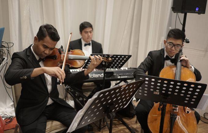 Wedding of Gabriella & Nicholas by Archipelagio Music - 001