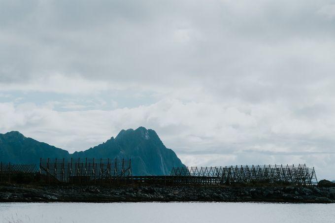 Lofoten adventure by Vegard Giskehaug Photography - 042