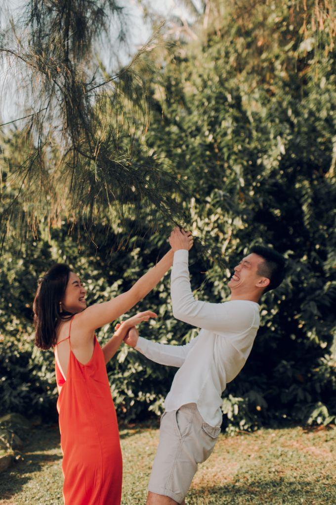 Singapore Prewedding shoot by Amelia Soo photography - 019