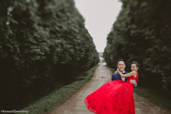 Sheryl+Amos Jeju Pre-wedding by Eric Oh  Korean Photographer - 012