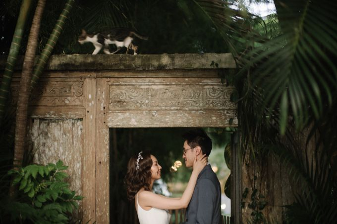 The Wedding of Allison & Kam by PYARA - 034