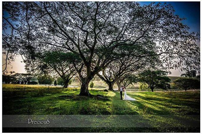 Lasting Elegance   Prewedding by precious wedding - 012