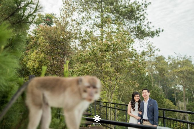 Kevin Amanda Pre-Wedding | A Beautiful Day by Ducosky - 015