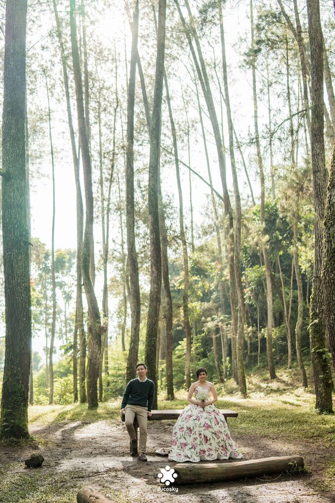 Kevin Amanda Pre-Wedding | A Beautiful Day by Ducosky - 029