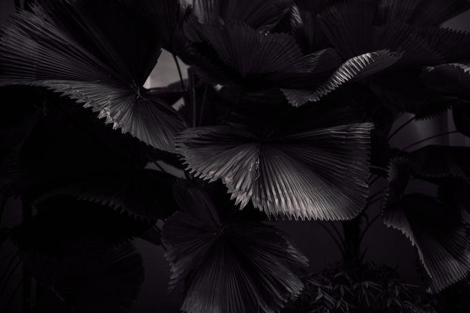 Ivo & Anelia by Something Beautiful Studios - 039