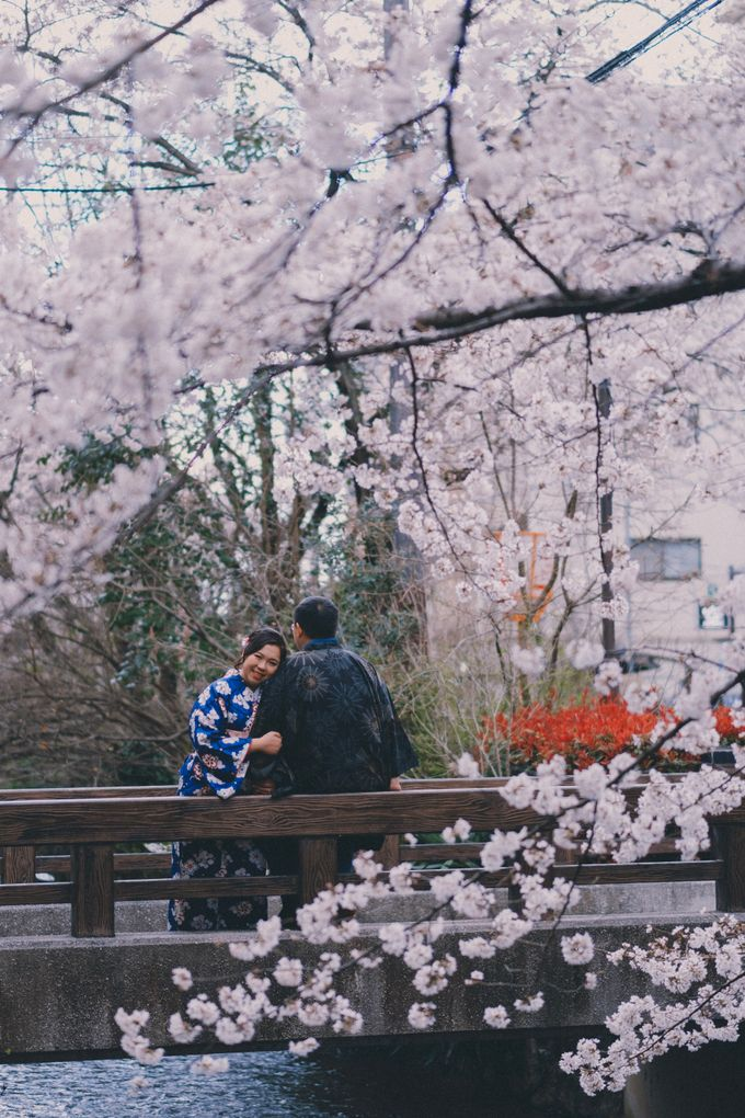 Kyoto Sakura Pre Wedding Shoot by Yipmage Moments - 003