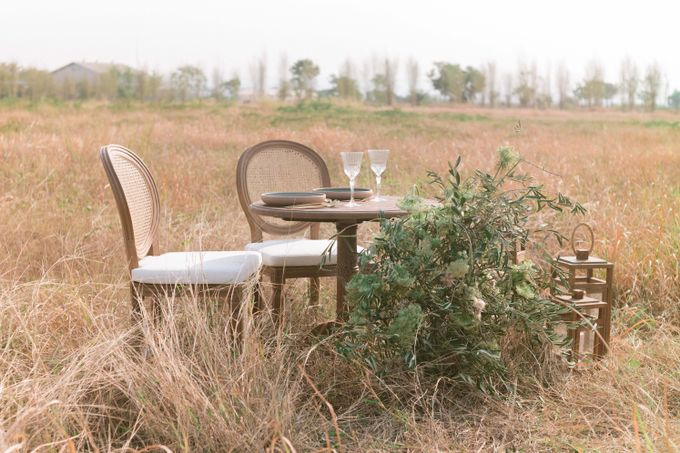 Louis Chairs and Bench Set by Le Scarlet Rental - 005